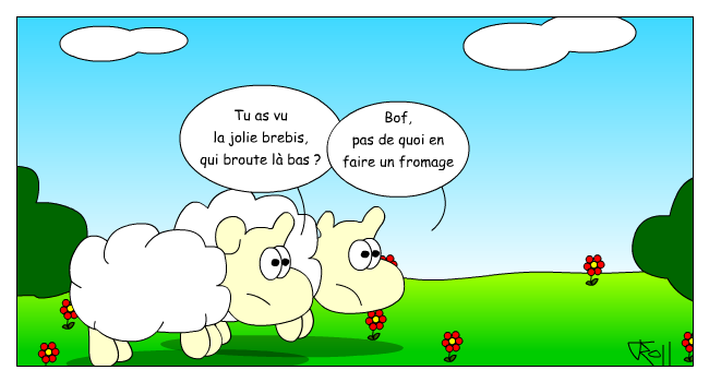 1 agneau à partager !